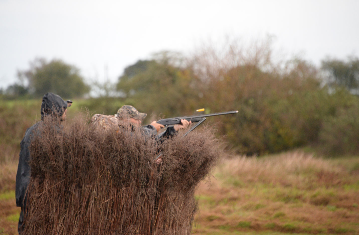 CORDOBA DOVE HUNTING AND PIEGONS HUNTING IN CORDOBA COMPARE WITH URUGUAY