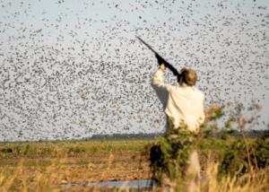 Hunting in Uruguay